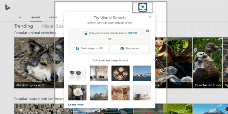Bing Images - Reverse Image Search Engine