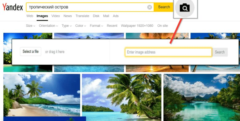 Yandex Images - Reverse Image Search Engine
